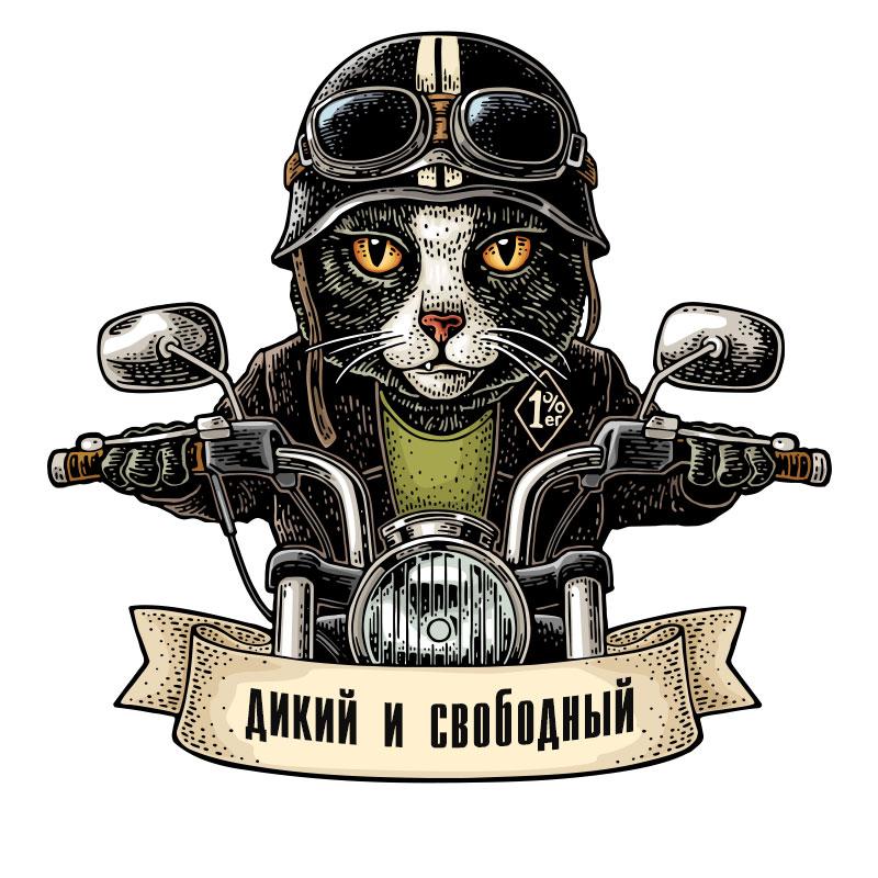 Картинка аватарка для парня с котом в чёрной куртке, шлеме и защитных очках на мотоцикле.