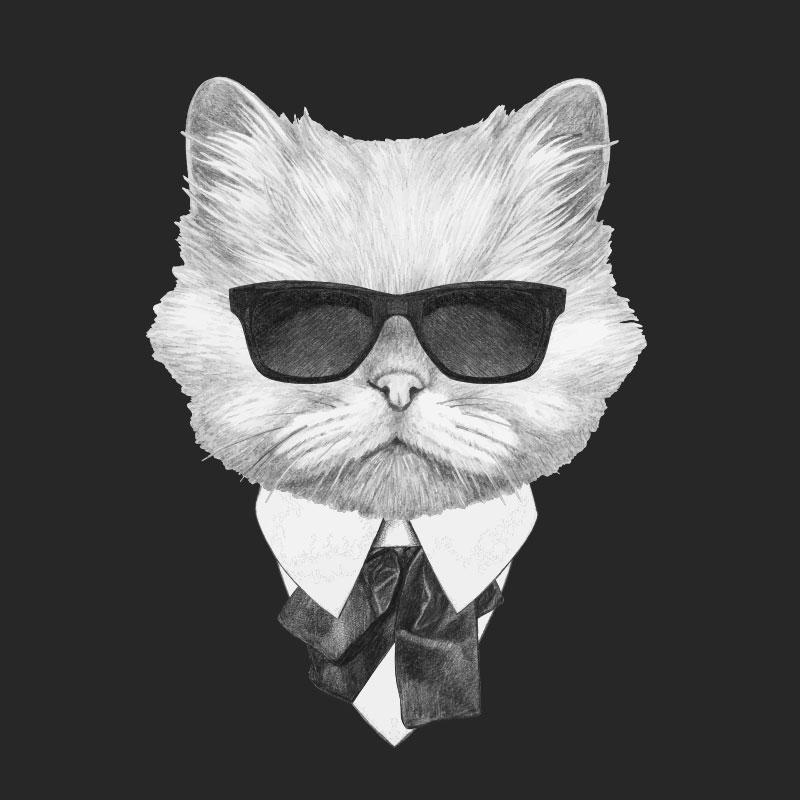 Белый кот в солнечных очках, костюме и галстуке на чёрном фоне.