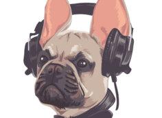 Картинка на аватарку для парней голова бульдога в ошейнике и наушниках.