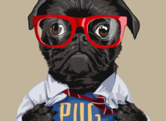 Прикольная картинка с мопсом в рубашке и красных очках.