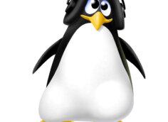 Прикольный пингвин в наушниках на белом фоне.