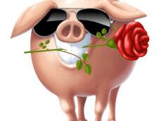 Прикольная аватарка на телефон свинья в солнечных очках с розой в пасти.