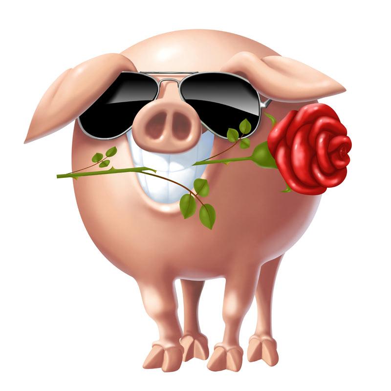 Прикольная свинья в солнечных очках с розой в пасти.