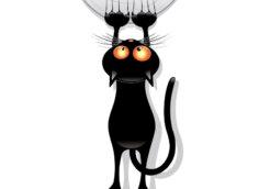 Прикольная аватарка чёрный кот
